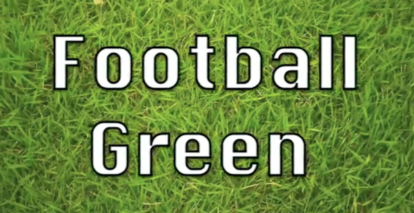 Football Green 3 – Tutti in Carrozza 5